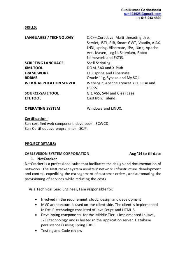 java programmer resume