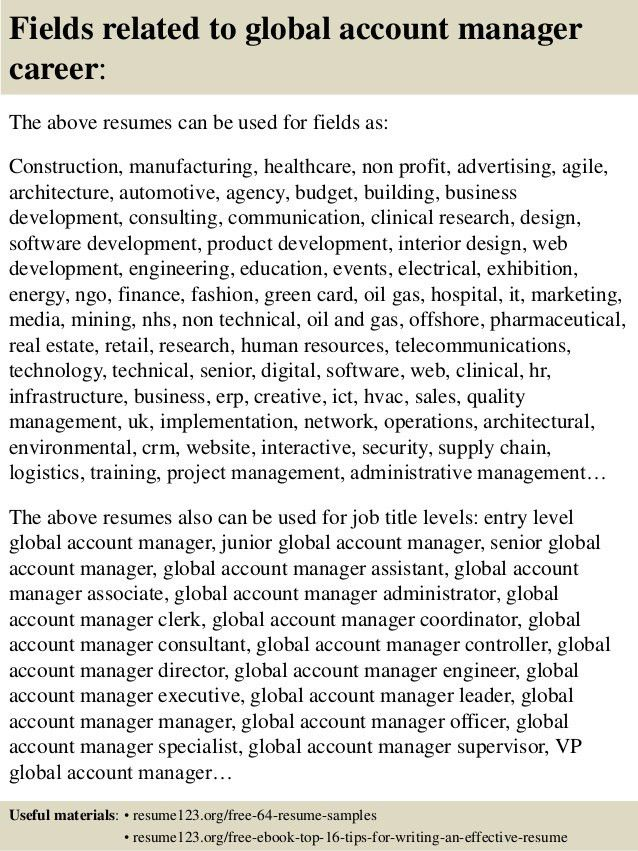 Account Manager Resume. 16 Fields Related To Global Account ...