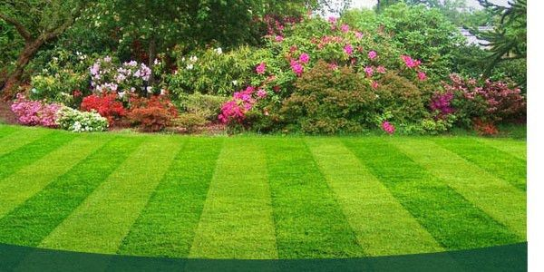 Lawn Care - Lawn Mowing - Landscaping - Gutter Cleaning - Power ...