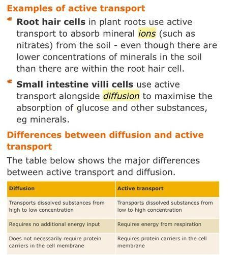 Active transport in root hair cells & the small intestine ...
