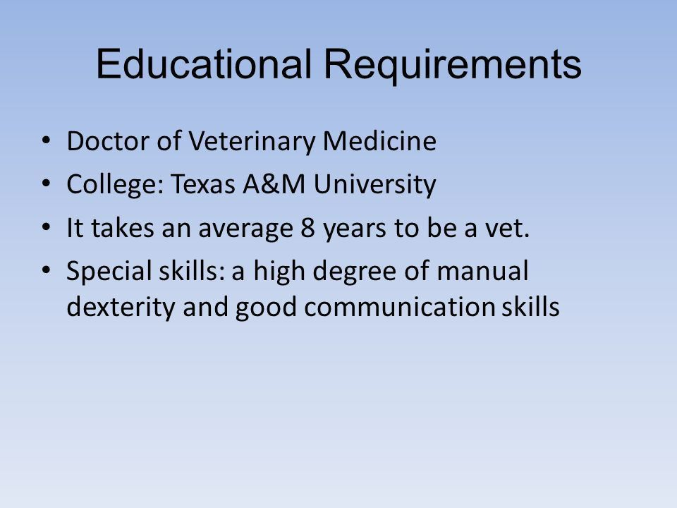 veterinarian job description