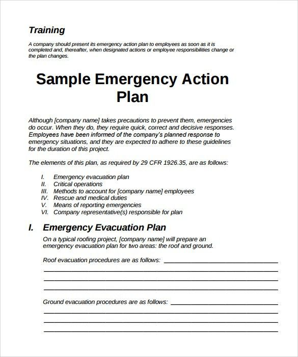 Sample Action Plan. Sample Action Plan Company-Action-Plan ...