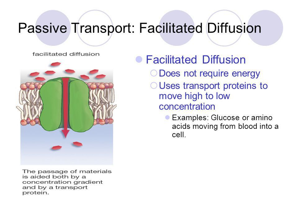 Types of Transport Across the Cell Membrane - ppt video online ...