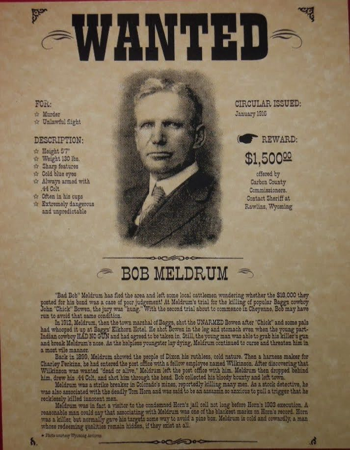 10 Best Images of Real Wanted Posters - Funny Wanted Posters ...