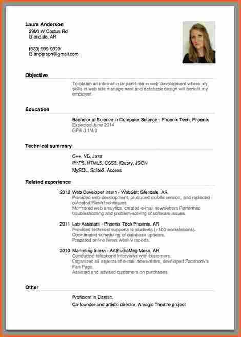 Beginner Resume Template
