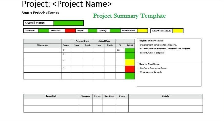 Get Project Summary Template | Exceltemple