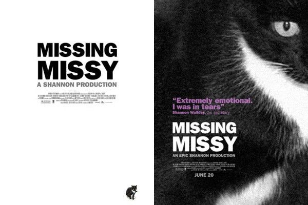 After A Cat Went Missing, A Graphic Designer Made These Hilarious ...
