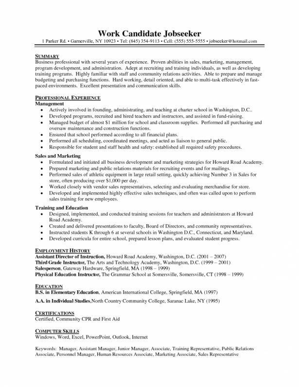 Curriculum Vitae : Format Of Resume With Work Experience Letter ...