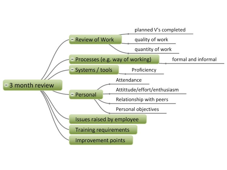 Employee 3 Month Review mind map