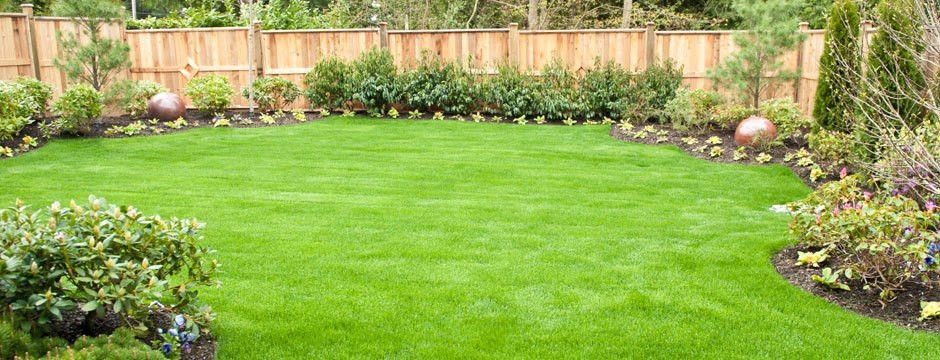 Grass Works Lawn Care - Austin TX - Local Lawn care in Austin ...