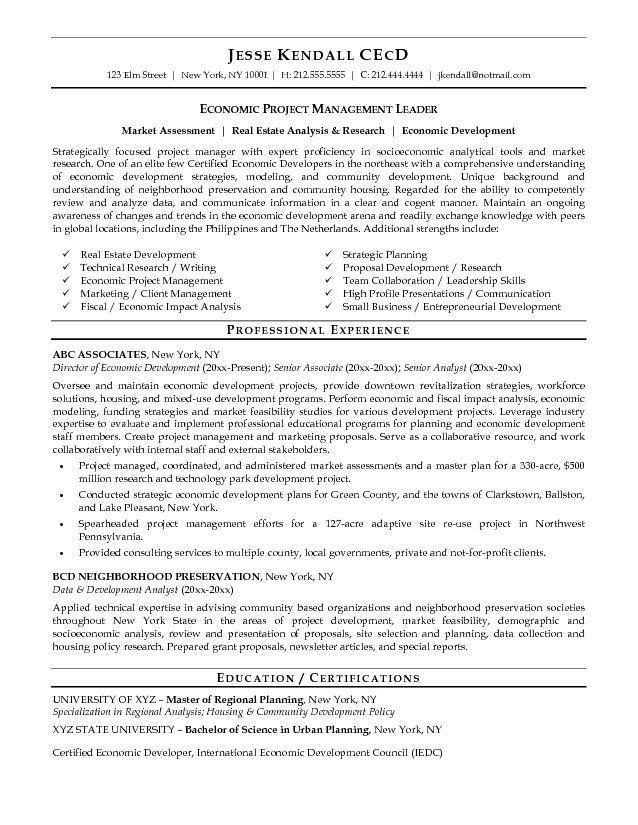 mainframe developer resume sample net developer resume hire it ...
