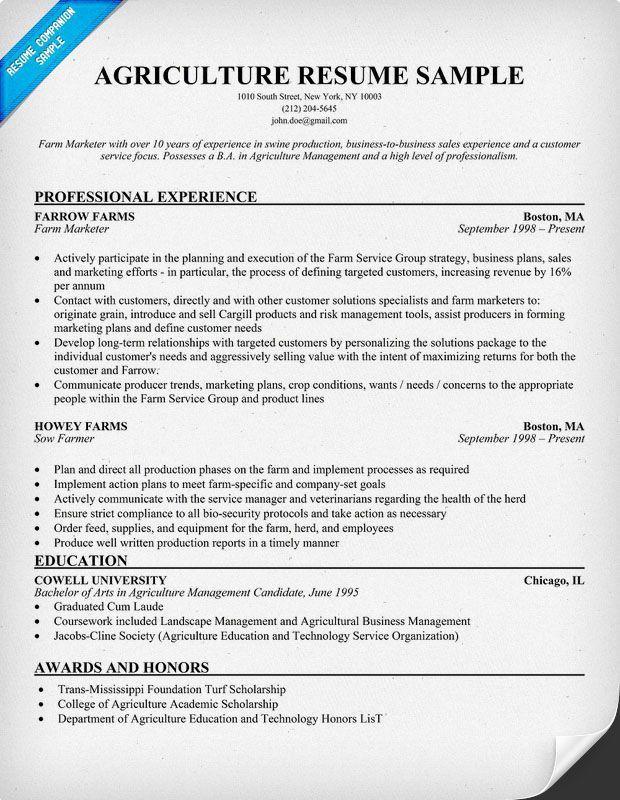 26 best resumes images on Pinterest | Teacher resumes, Resume ...