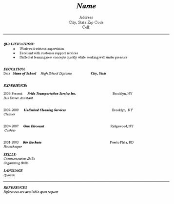Level Resume Template