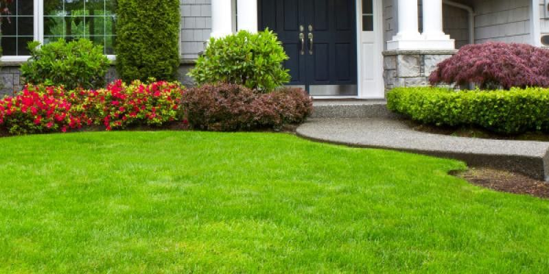 Beginners Guide to Lawn Care | Lawn Doctor