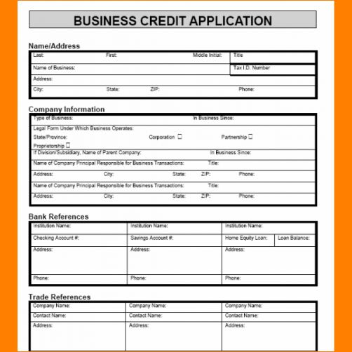 4+ credit application template | Outline Templates