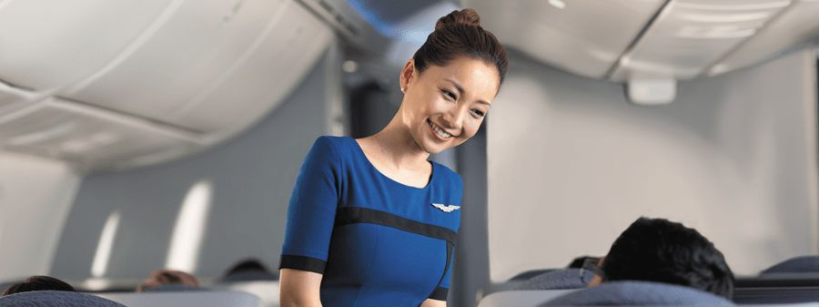 United Airlines Flight Attendant Jobs - Jobs