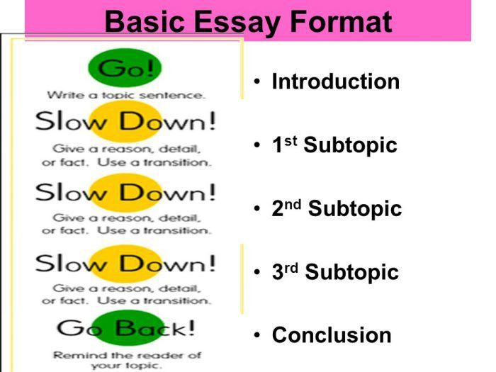 essay structure format 19 perfect introduction majestys essay - Essay Structure Format