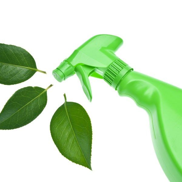Green Cleaning - A Service offered by Horizon Services Company ...