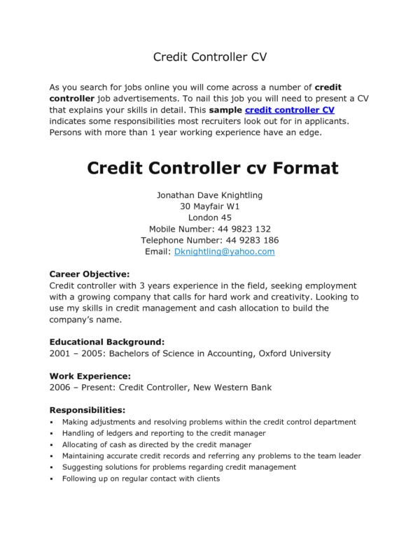 Nice Resume Template and CV Example for Credit Controller Position ...
