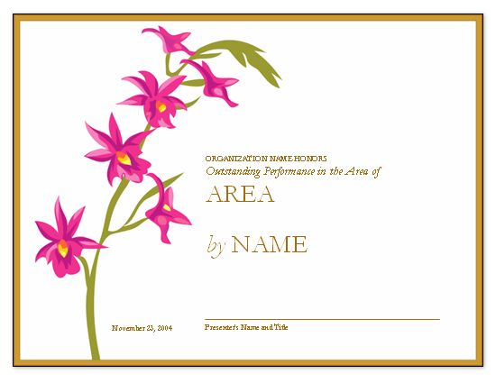 Beautiful Certificate Template Sample for Business or Organization ...