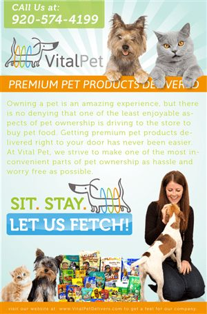 Pet Poster Design Galleries for Inspiration