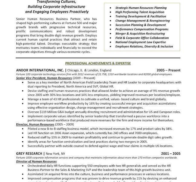 Download Executive Resume Templates | haadyaooverbayresort.com