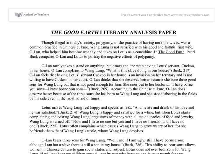 Critical analysis essay - Academic essay