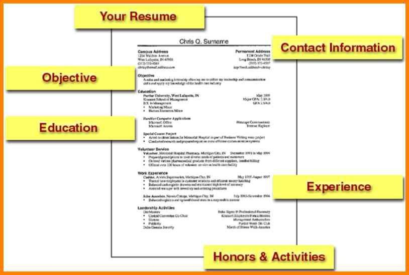 8+ basic resume examples for jobs | cashier resumes