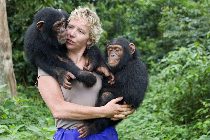 Careers With Animals: Primatologist