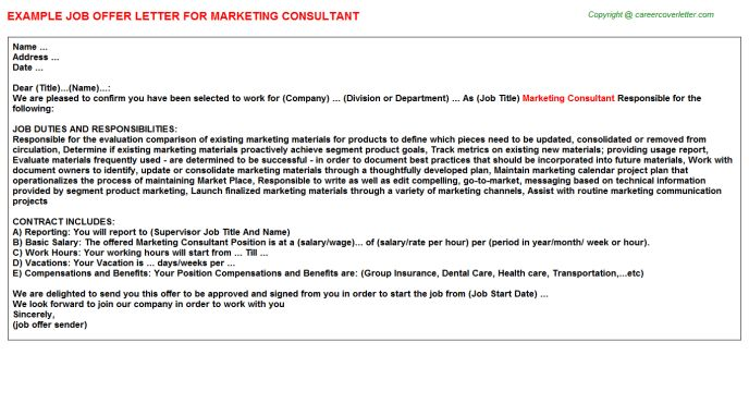 Freelance Marketing Consultant Offer Letters