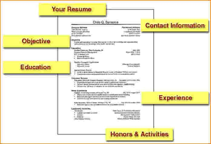 Beautiful Design How To Structure A Resume 3 Litigation Attorney ...
