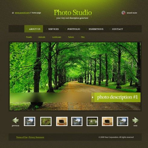 Ever Green HTML Template - 5485 - Art & Photography - Website ...