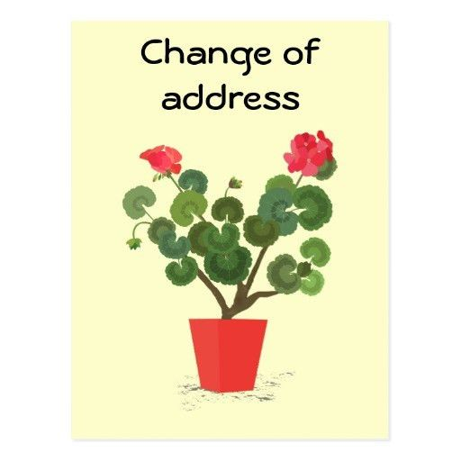 28+ Change Of Address Cards Templates | Gallery For Gt Change Of ...