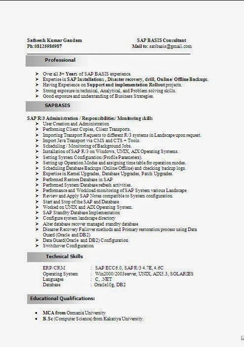 sap sample resumes sap cv sample sap jobs resume writing a