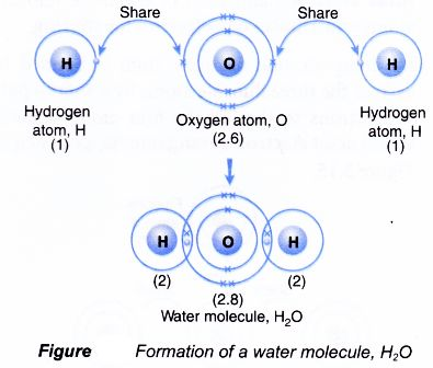 How is covalent bond is formed?