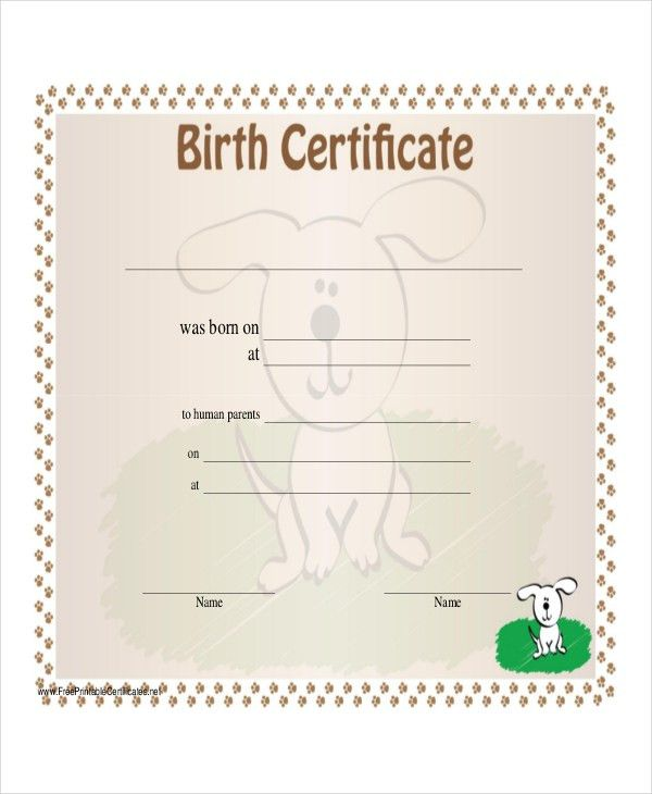 Beautiful Printable Birth Certificate Template Contemporary - Best ...