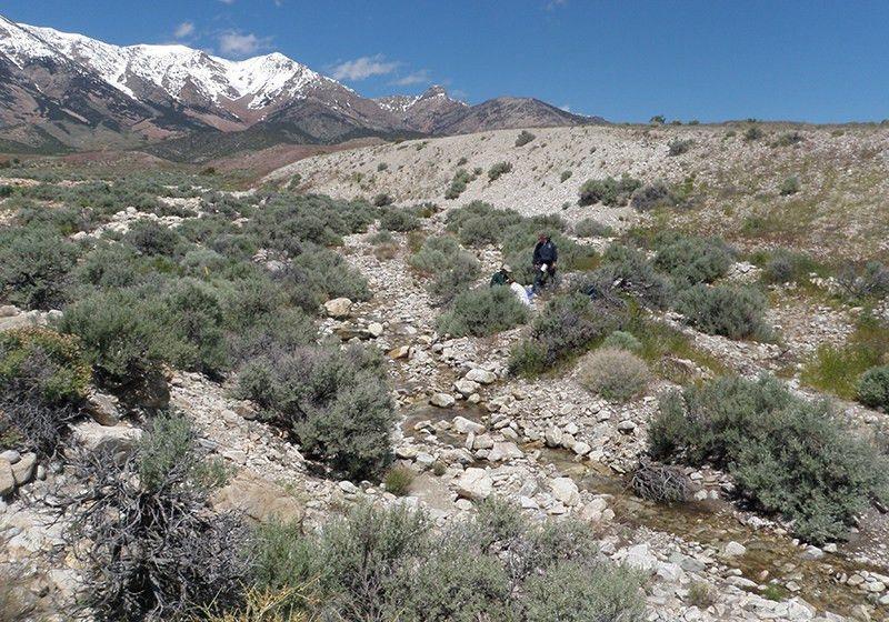 Geology Field School