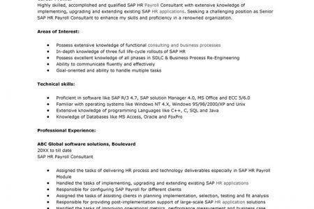 sap hr payroll consultant resume sap hr payroll consultant resume