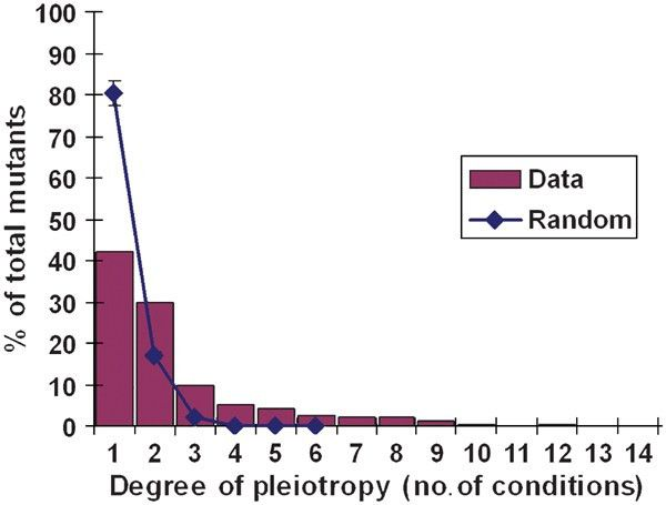 A global view of pleiotropy and phenotypically derived gene ...
