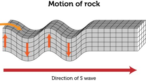 Transverse Wave | CK-12 Foundation