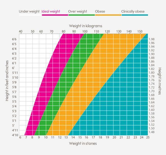BMI calculator | Weight loss | Waitrose