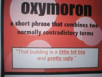 22 best OXYMORON! images on Pinterest | Funny signs, Figurative ...