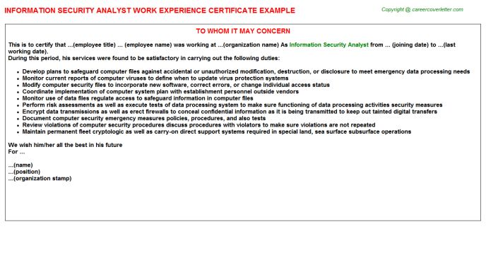 Information Security Analyst Work Experience Certificate