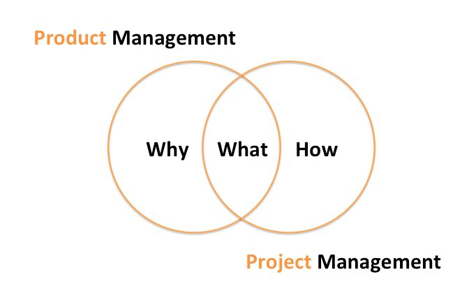 Understanding the skills for a new role – from project manager to ...