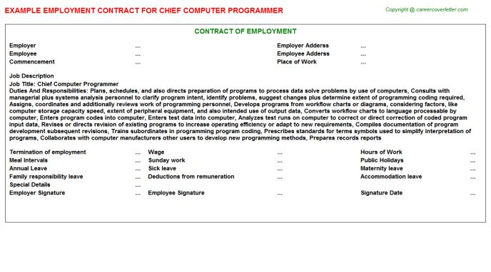 Chief Computer Programmer Employment Contract