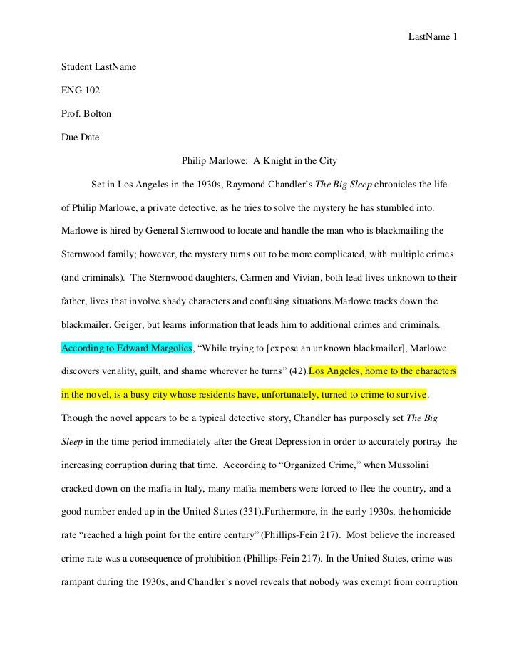 2 argumentative essay examples a fighting chance essay writing ...