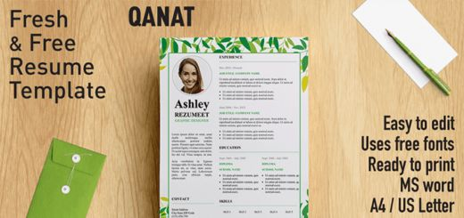 Free Resume Templates With White Background | Rezumeet