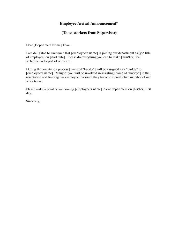 New Employee Announcement Letter | The Letter Sample