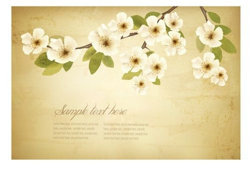 Spring white flowers with vintage background 01 – Over millions ...