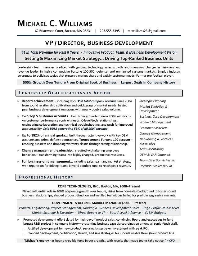 VP Business Development Sample Resume | Executive Resume Writing ...